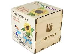<b>printio</b> подсолнух | novaya-rossia-konkurs.ru