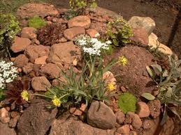 Small Picture 64 best Modern Rock Gardens images on Pinterest Garden ideas