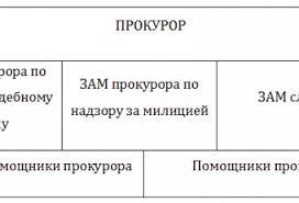 Отчет о прохождении Страница Отчеты по практике на заказ Отчет Прохождения Практики в Прокуратуре