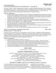 Ceo Chief Executive Officer Resume Impressive Templates Template