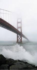 РЕФЕРАТ на тему Висячие мосты Реферат Висячие мосты doc ооружение моста представляло собой серьезную техническую задачу из за больших нагрузок на конструкцию которая осложнялась характером здешних тихоокеанских