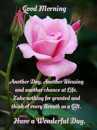 Blessed Morning Quotes Custom Good Morning Blessings Good Morning Quotes Pinterest Blessings