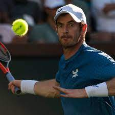 Andy Murray has a chance to test himself against in-form Zverev   Andy  Murray