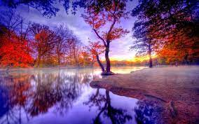 High Resolution Nature Hd Wallpaper For ...