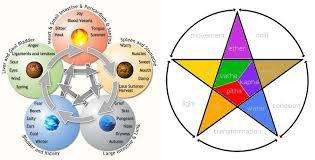 Comparing Tcm And Ayurveda World Vitae