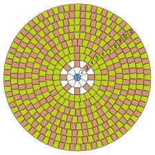 Circular Paving Patterns Simple Inspiration Design