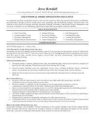 Executive Resume Templates Word Impressive Executive Resume Template Lepalme
