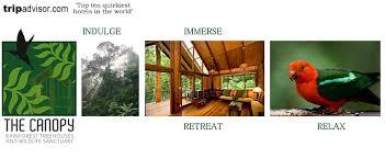 The Canopy Rainforest Tree Houses And Wildlife Sanctuary  Malanda The Canopy Treehouses