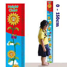 Height Chart Pictures Height Chart Sunflower 150cm