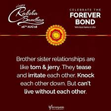 Meaningful Sister Quotes Gorgeous Raksha Bandhan Quotes Messages