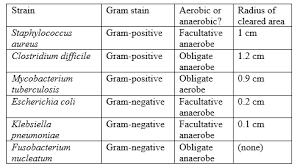 Gram Positive Antibiotics Chart Quiz Worksheet Research Summaries In Act Science