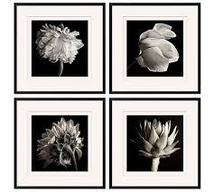 on black white framed wall art with flower black white framed print pottery barn