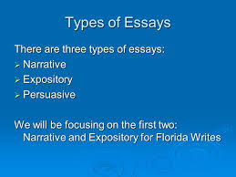 writing an essay by megan n brink ppt video online  3 types of essays