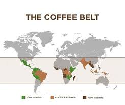 Where in the world is coffee belt? An Introduction To Coffee L Americano Specialty Coffee Blog In Paris L Americano