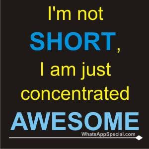 my attitude shayari in english