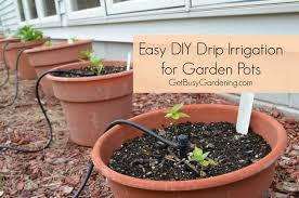 drip system for garden. How To Install A DIY Drip Irrigation System For Potted Plants Garden