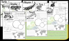 Difference Between Amphibians And Reptiles Venn Diagram Reptiles And Amphibians Nature Notebooking 40 Pages
