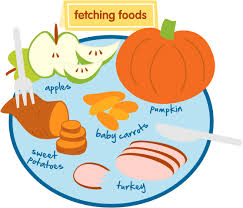 healthy recipes clipart. Modren Clipart Thanksgiving Treat Recipes For Your Dogs And Cats To Enjoy With Healthy Clipart F