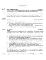 Resume Format For Mba Student Free Resume Example And Writing