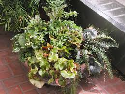 Small Picture Easy Container Gardening Ideas Luxury Homes