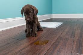 how to remove stain on wood