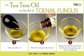 tea tree oil melaleuca has antiseptic and antifungal properties that help in the treatment of toenail fungus this oil is also used to treat other kinds