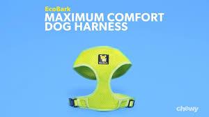 Ezv_019_ecobark_maximumcomfortdogharness_wistia_r0