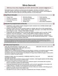 visual resume examples examples of business analyst resumes bca it sample resume of healthcare business analyst sample resume business analyst resume examples junior it business