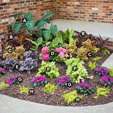 shade garden planting plan