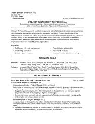 IT Project Manager Resume Sample & Template