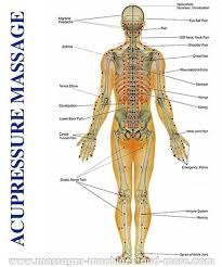 Pressure Points On Arms Google Search Reflexology