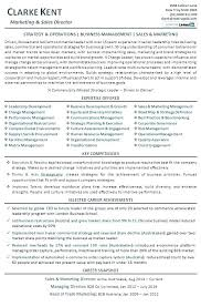 Marketing Director Resume Objective How To Enhance Resumes Sales And