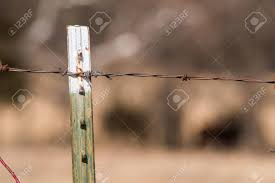 white fence post. Green And White Fence Post With Barbed Wire Stock Photo - 71229978