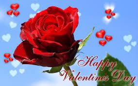 valentine roses wallpaper. Fine Valentine Sweetrosewallpapervalentinedayfreebeautifulhd With Valentine Roses Wallpaper E