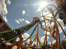 busch gardens tampa cheetah ride there are 8 roller coasters at busch gardens tampa