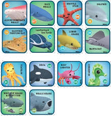 Octonauts Creature Chart Related Keywords Suggestions