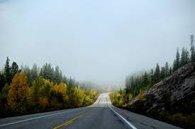 Empty Country Road In Fog Free Stock Photo
