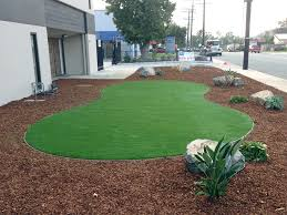 Landscape Designs For Backyards Simple Fake Grass Carpet South San Francisco California Backyard