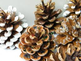Pine Cone Christmas Decorations Natural Christmas Tree Decorations With Pine Cones Dried Flower