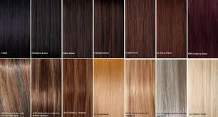 Hair Extension Color Chart Helpful Color Chart Hair Dye Colors Brown Hair Colors