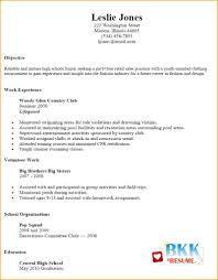 Basic Resume Examples Enchanting 48 Basic Resume Examples For Part Time Jobs Job Appication Template
