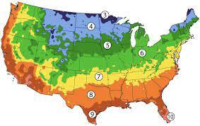 zone 7 planting calendar urban farmer