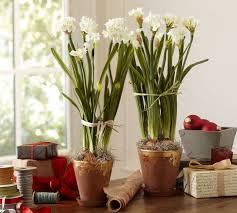 White Paper Flower Bulbs White Paper Bulbs As Vivid And Fresh Interior Ornaments