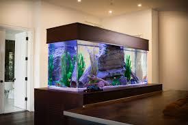 Aquarium Mural Design Infinity Aquariums Greg Baroth