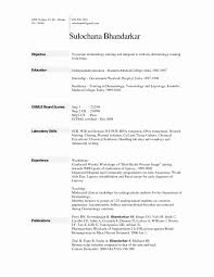 Normal Resume Format Word Unique Free Resume Template Word