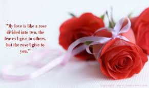 Rose Quotes Love