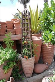 Small Picture Edible Container Gardening 101 Eye of the Day Garden Design Center