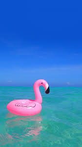 オシャレなiphone壁紙ため息が出るほど美しい海にピンクが映える