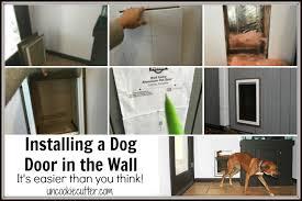 dog door in the wall installation