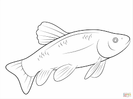Small Picture To Color Coloring Pages Getcoloringpagescom Bass Bass Picture Of